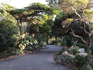 Image result for Quail Gardens Encinitas